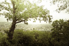 Paris: XXXIV