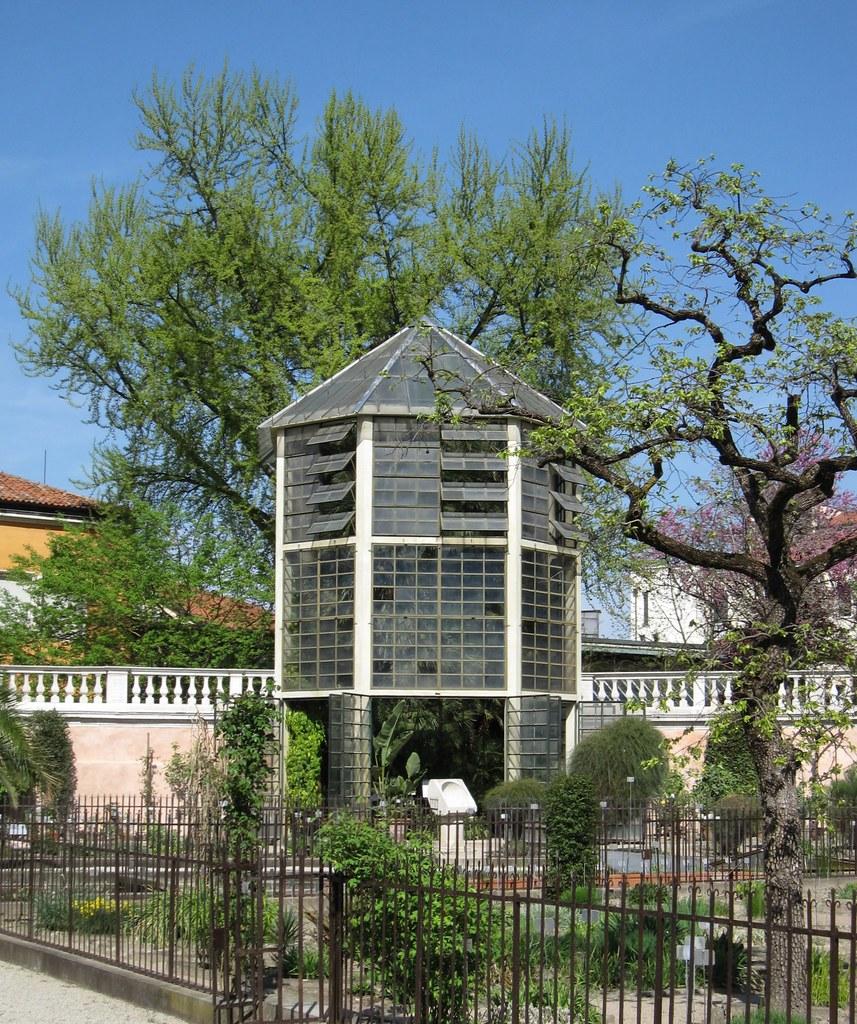 Padova, Orto Botanico. La serra con la \'Palma di Goethe ...