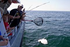 20110731 - Cub Scout Fishing