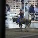 Sarpy Fair Rodeo 461
