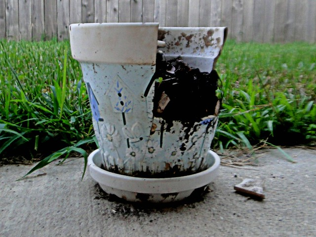Broken Flower Pot | Flickr - Photo Sharing!