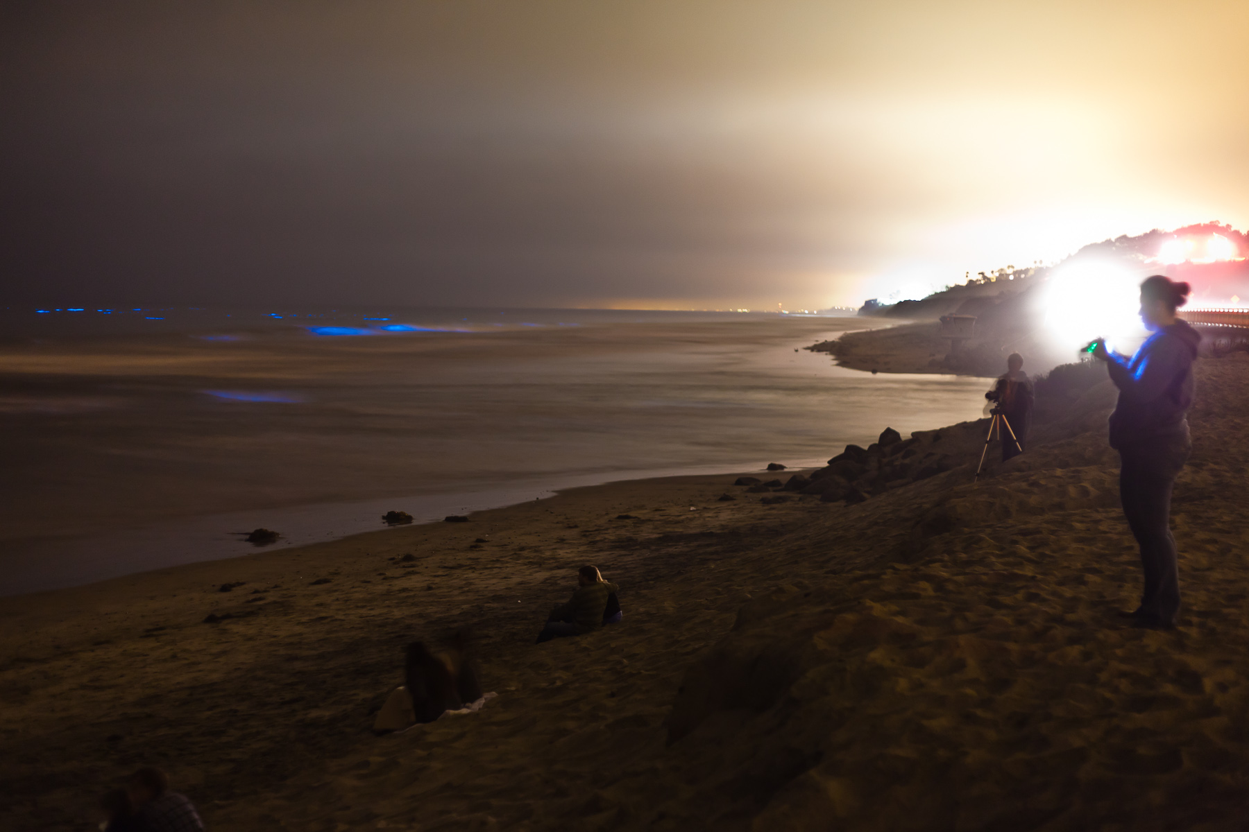 Red tide bioluminescence in san diego red tide at night for Tides for fishing san diego