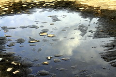 puddle, sand, water, sunlight, nature, body of water, reflection,