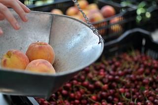 KWTCSA Peaches