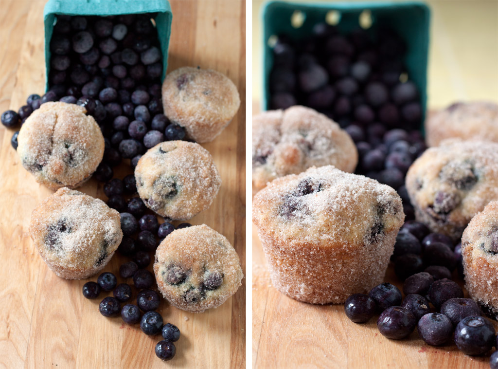 Blueberry Donut Muffins | Flickr - Photo Sharing!