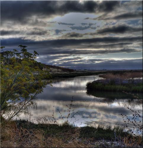park summer cloud sunrise reflections bay san francisco day cloudy 100views 500views 1000views menlo bayfront 2214 2213 vertorama regionwide