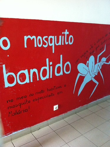 "DAY #1: ""Malaria-Mosquito warning sign painting on corridor wall - Maputo"" ... Kevin McKidd"