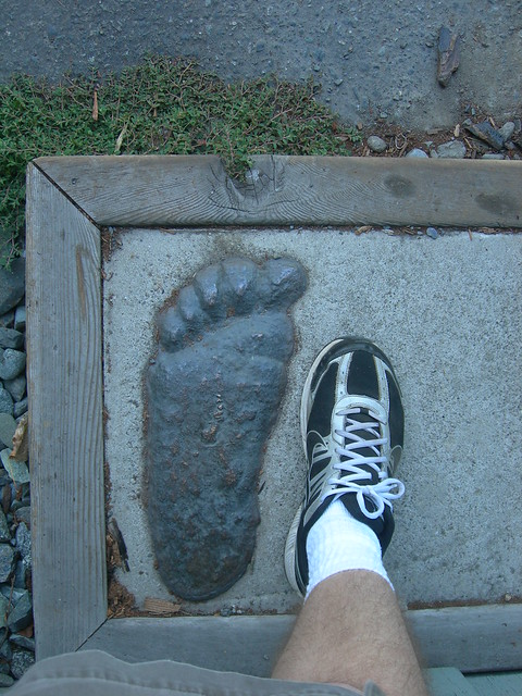 A Bigfoot Impression