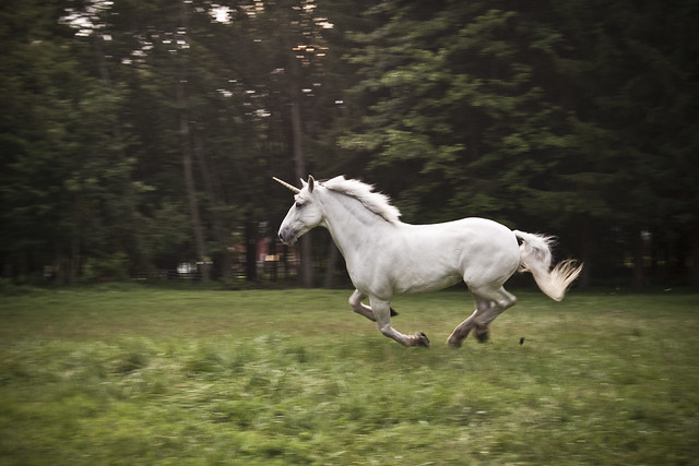 6035816980 f62f233ee9 z jpgReal Life Unicorn Found