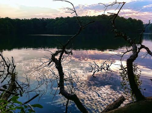 lake reflection nature water ga landscape stick ripples 365 stonemountain iphone4