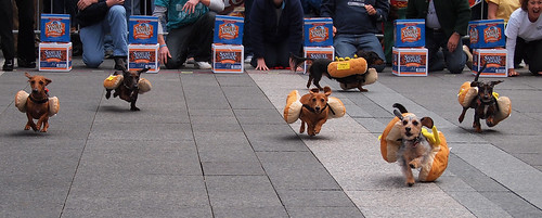 Running Of The Wieners (13)