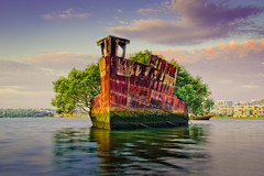 Shipwreck + Oxidation + Mangroves = ^^