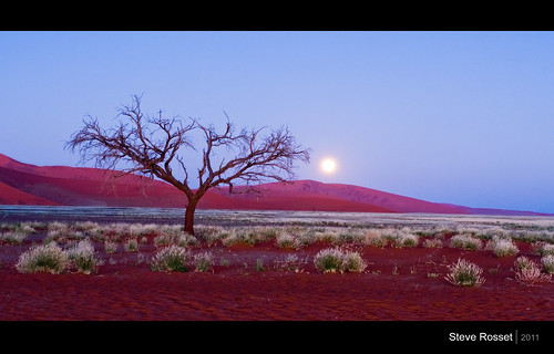 africa travel red moon tree landscape geotagged twilight sand desert dunes may moonlit exotic geo namibia sossusvlei 2011 steverosset touraroundtheworld visipix geoafrica