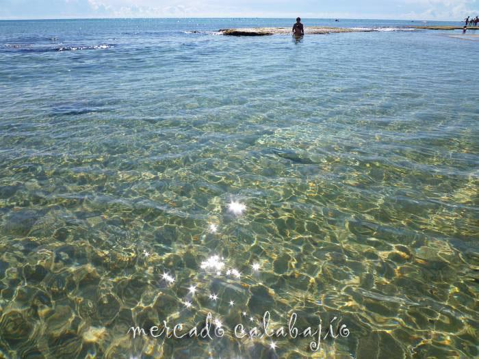 FOTOS VERANO 2011 IV
