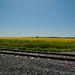 Leverich, North Dakota