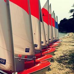 Sailability SG