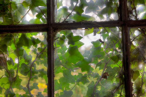 Shed window, John James Audubon Center