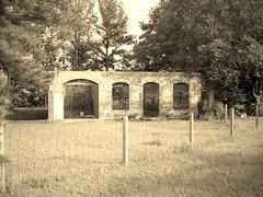 Rex ruins