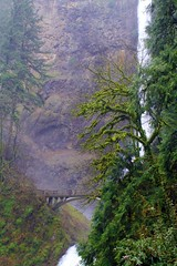Multnomah Falls -Mystical