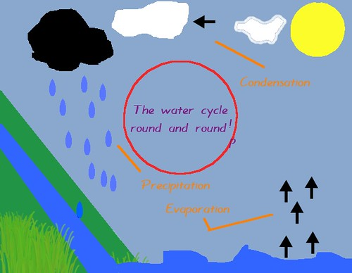 The water cycle by Lucy