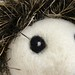 Frank the Hedgehog closeup