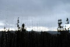 Rainy Day at the Dorm