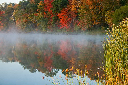 morning autumn trees lake color fall nature colors leaves fog wisconsin forest sunrise season landscape woods fallcolors calm hike