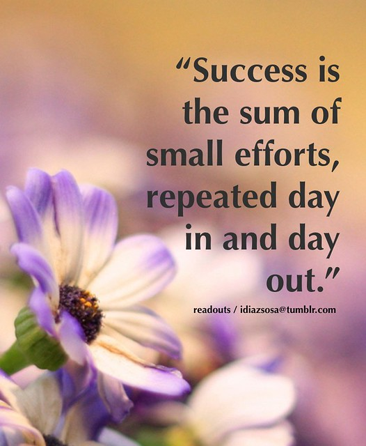 """Success is the sum of small efforts, repeated day in and day out."""