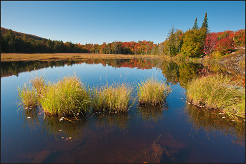 ontario canada fall nature landscape colorslake