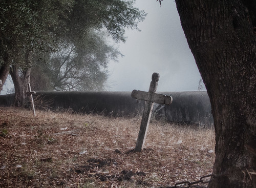 Mission Cemetery in fog