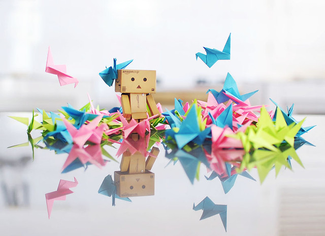 Danbo's All Time Love