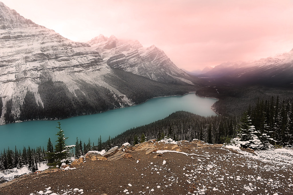 peyto lake sunrise