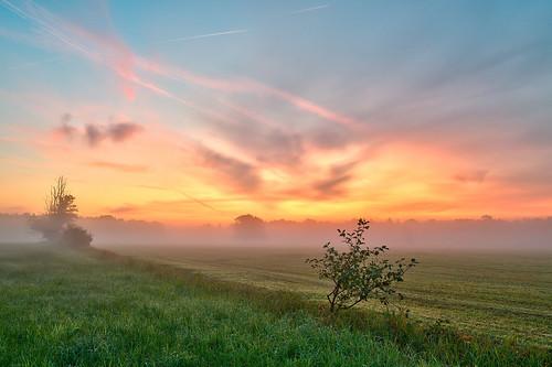 mist dawn hdr 2011 tonemapping mönchbruch