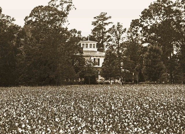 King Cotton and the Old Plantation House | Flickr - Photo ...