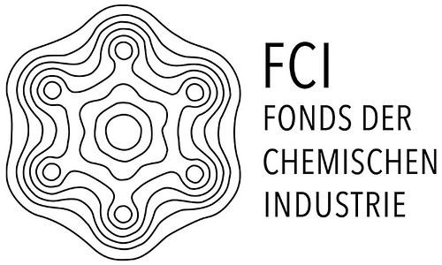 Tulla-Gymnasium Rastatt: Fonds der Chemischen Industrie fördert Naturwissenschaftliches Arbeiten