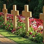 Image of War. jersey sthelier warcemetery howarddavispark