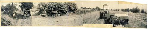 haymaking at Hafod Fach