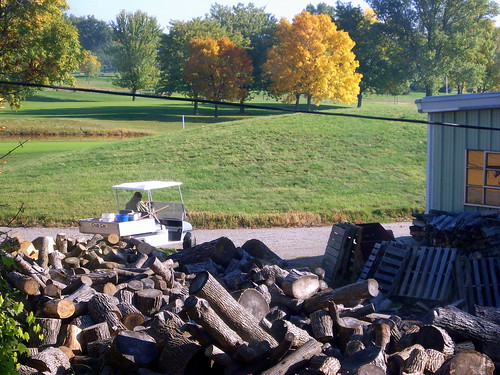 oshkosh wi wisconsin foxrivervalley lakeshoremunicipalgolfcourse golf golfing golfcourse countryclub grass landscape tree trees autumn color fall fallcolor foliage wood woodpile firewood clubcar golfcar golfcart utilityvehicle greenery powerline electricline pallets foxcities foxrivercities lakeshoremunicipal colfcourse