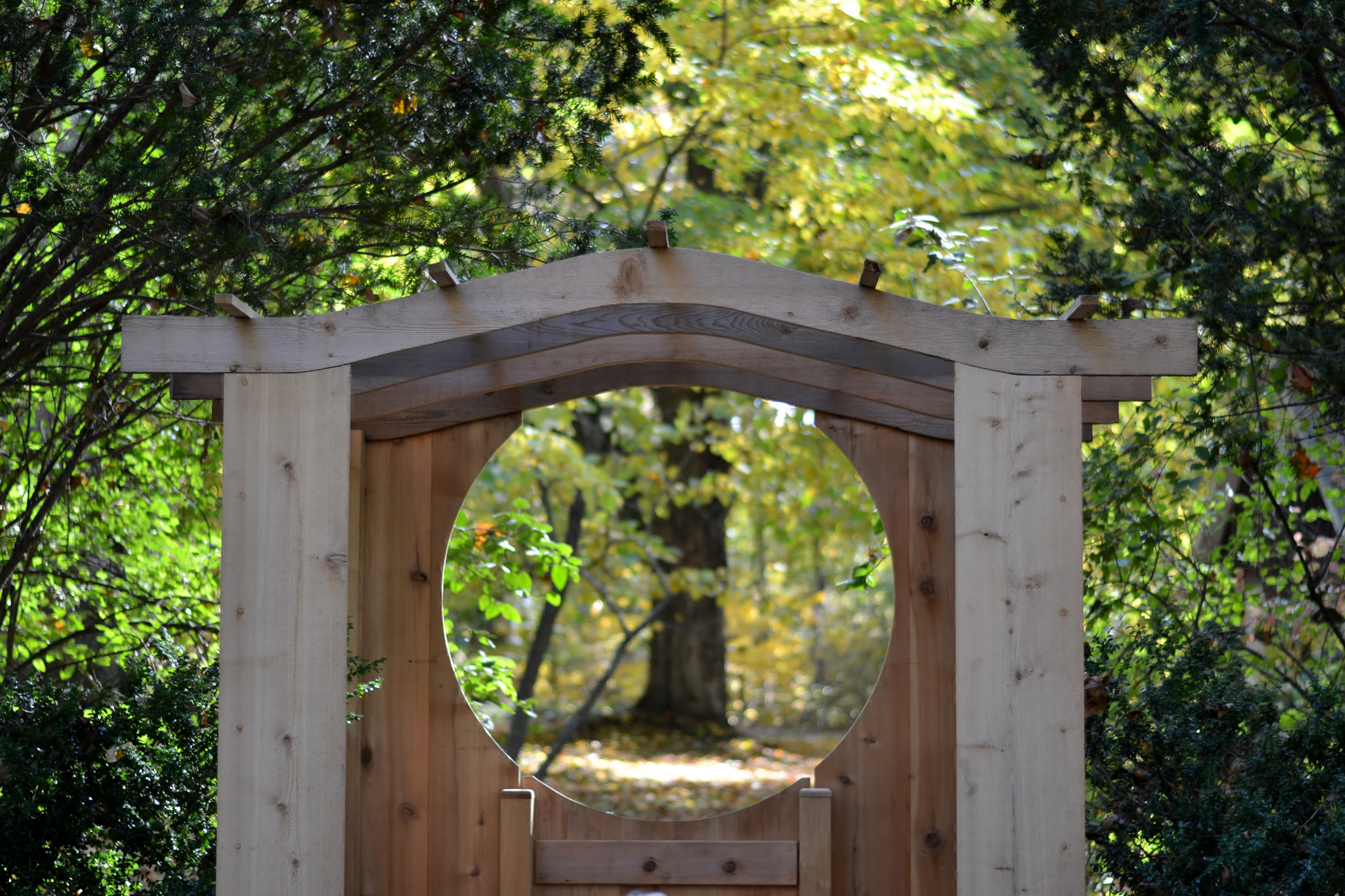 Fernwood Botanical Gardens Rotary Botanical Gardens Hort Fernwood Botanical Garden Fernwood