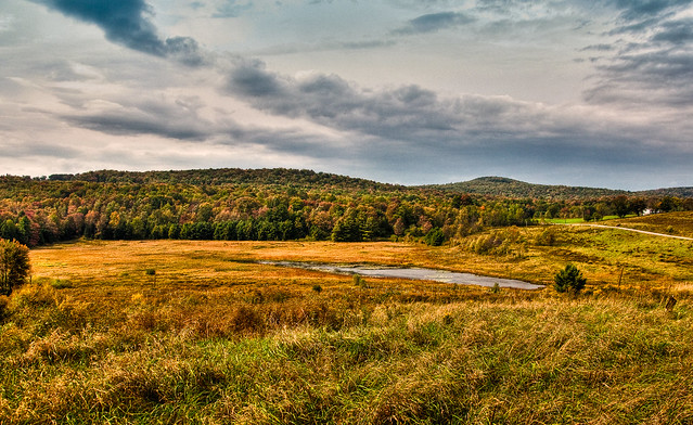 Beaver Meadow Nature Center