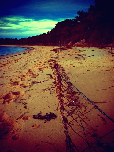 iPhone Project 365: Day 123: After the Storm, Bundeena