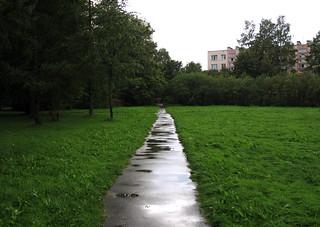 (260/365) Wet road