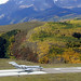 Citation X N888EJ at Telluride/TEX