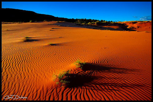 park sunset art nature landscape photography utah sand desert state outdoor dune fine wilderness coralpink