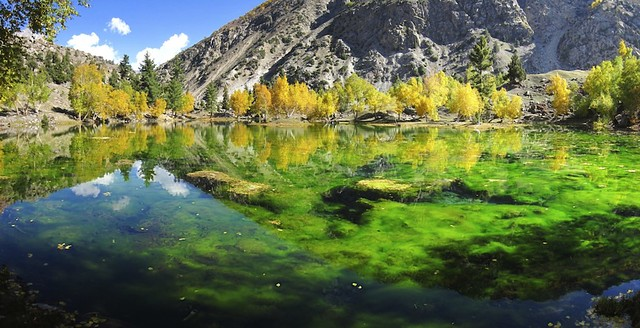 A small lake near Naltar Lake.