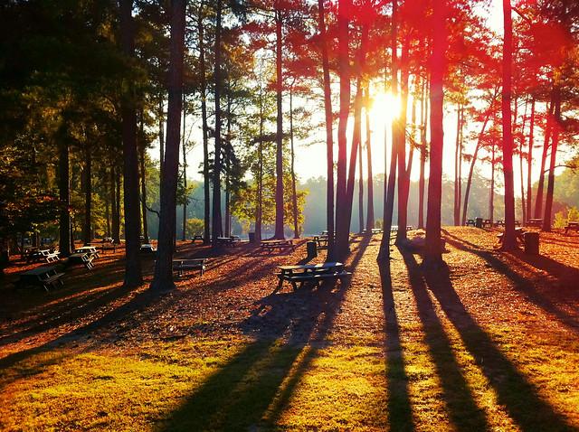 Picnic Sunrise