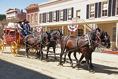 vehicle, pack animal, coachman, horse, horse harness, horse and buggy, land vehicle, carriage, cart,