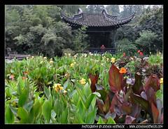 China - HEFEI