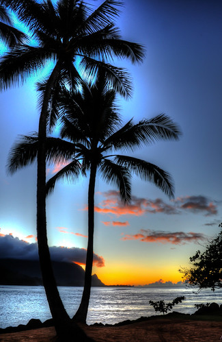 HDR Sunset next to the palm trees on the beach at Hanalei Bay