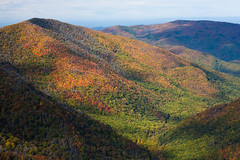 Great Smoky Mountainsides II